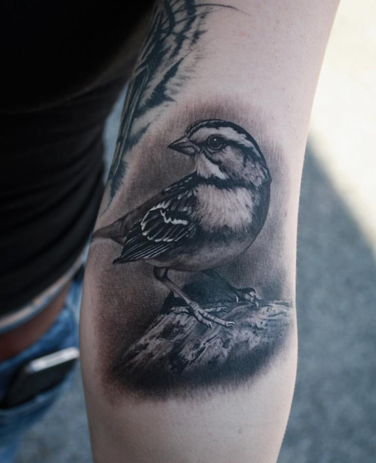 tattooscout forum aussergew hnliche hervorragende tattoos tattoo 186. Black Bedroom Furniture Sets. Home Design Ideas